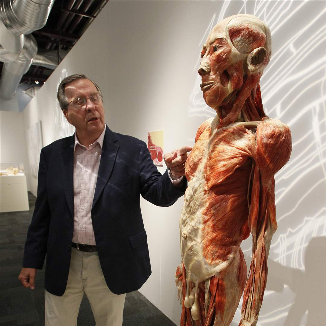 Bodies-Revealed-Dr-Roy-Glover-and-full-standing-skeleton
