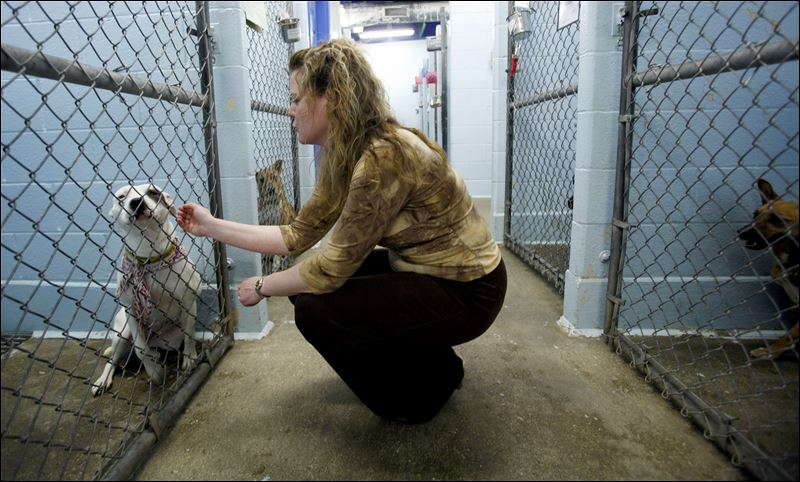 Humane Society has legacy of helping Lucas Co. animals - Toledo Blade