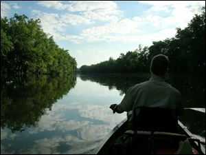 Matt Horvat rests his canoe paddle for a moment just after dawn Wednesay near Antwerp on the Maumee River during the 'Fort-to-Port' trip.