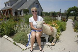 Fae Leffler and Amore, a 4-month-old lamb, in the courtyard garden.