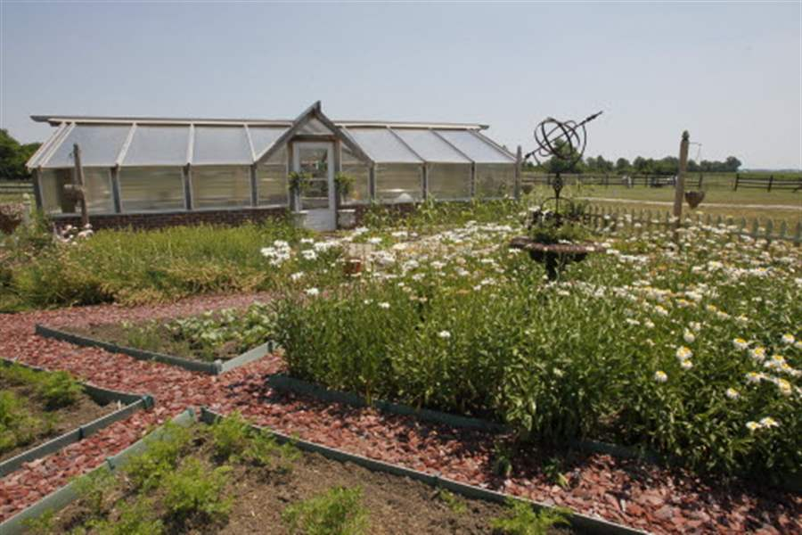 The-kitchen-garden-and-greenhouse