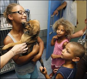 Leiana Butler, 9, holds Juniper, her new puppy, at the Lucas County pound as her sister Kayiona, 6, and her brother Kalon, 5, await their turn.