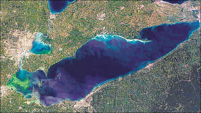 Satellite photo of algae bloom on lake erie This satellite photo shows an algae bloom, in green coloration at left, that continues to grow eastward over a section of Lake Erie.