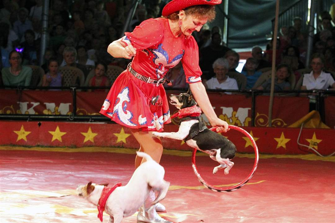 Kelly-Miller-Circus-Carolyn-Rice-dogs