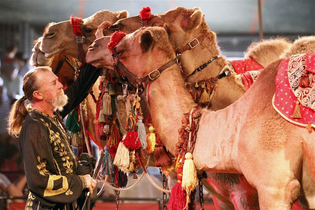 Kelly-Miller-Circus-Mike-Rice-camels