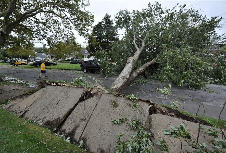 Tree-uprooted-by-Irene-in-Long-Beach-New-York