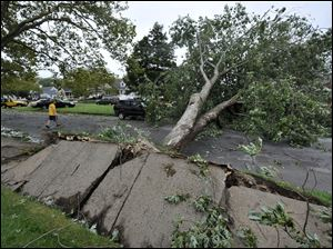 A tree is seen uprooted during Tropical Storm Irene in Long Beach, N.Y.