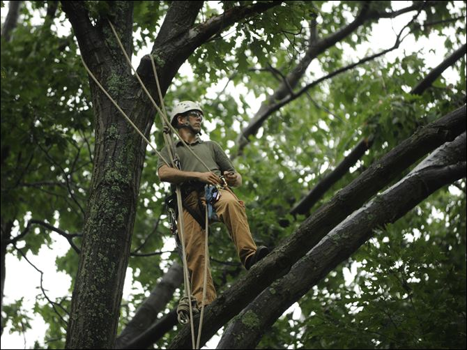 Arborist Mark Trautman Arborist Mark Trautman prepares to climb 100-foot tall trees in Center Hall, Pa. He was among those who combed through the wreckage of Flight 93 in Shanksville, Pa., on Sept. 11, 2001.