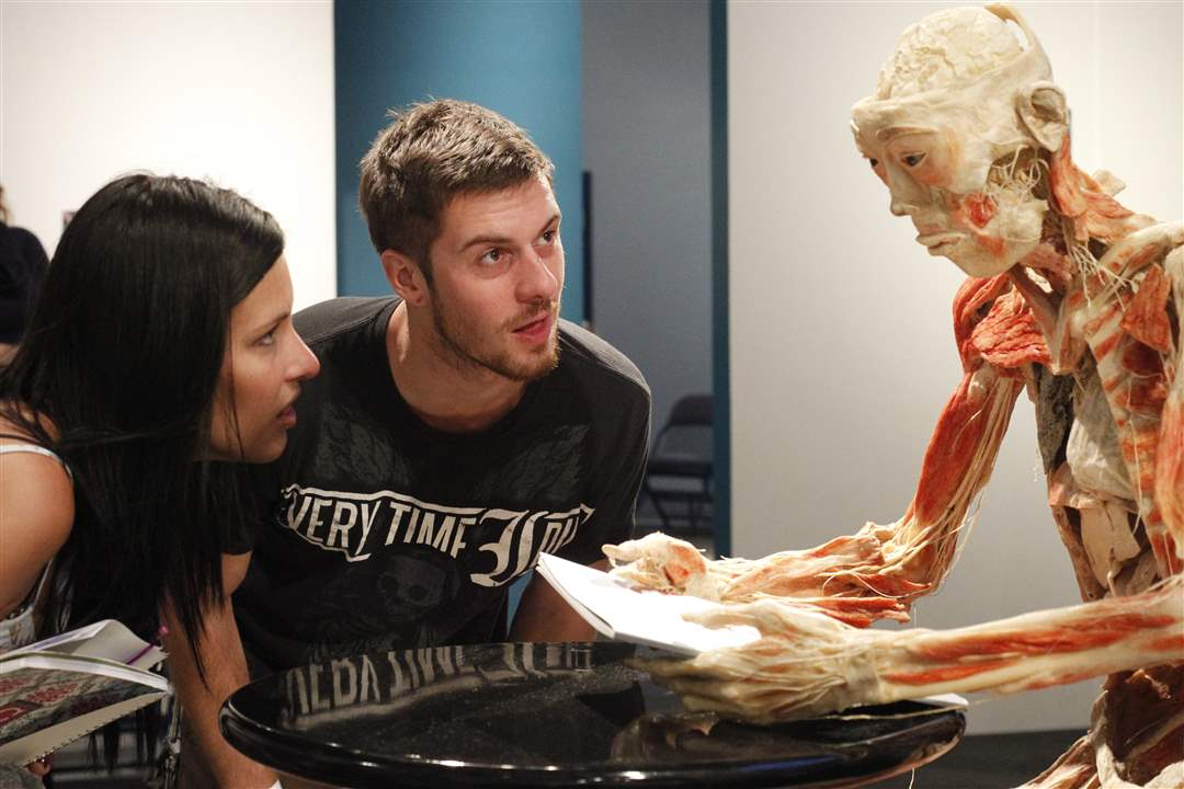 UT-students-Ashley-DeKay-left-and-Patrick-mcDonagh-look-at-a-piece-of-the-Bodies-Revealed-exhibit