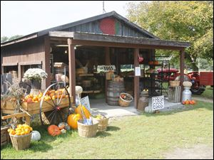 The Stevens Gardens' shop in Monclova, Ohio, offers other farm products, as well as pumpkins.