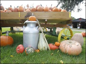 A display of pumpkins and gourds greets visitors of Stevens Gardens.