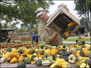 Denny Laux of Monclova adds gourds to the flatbed trailer at Stevens Gardens.