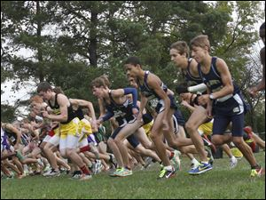 The Boys TRAC cross country meet begins at Pearson Park in Oregon, Saturday.