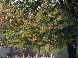 The varsity boys race is bunched in the opening mile of the Northern Lakes League cross country championship meet at Pearson Metropark in Oregon, Saturday.