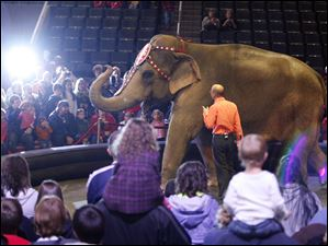 Ryan Henning and Asia the elephant meet the guests of the Ringling Bros. and Barnum & Bailey Circus.