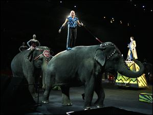 Animal trainer and presenter Tabayara 'Taba' Maluenda rides an elephant at the start of the show.