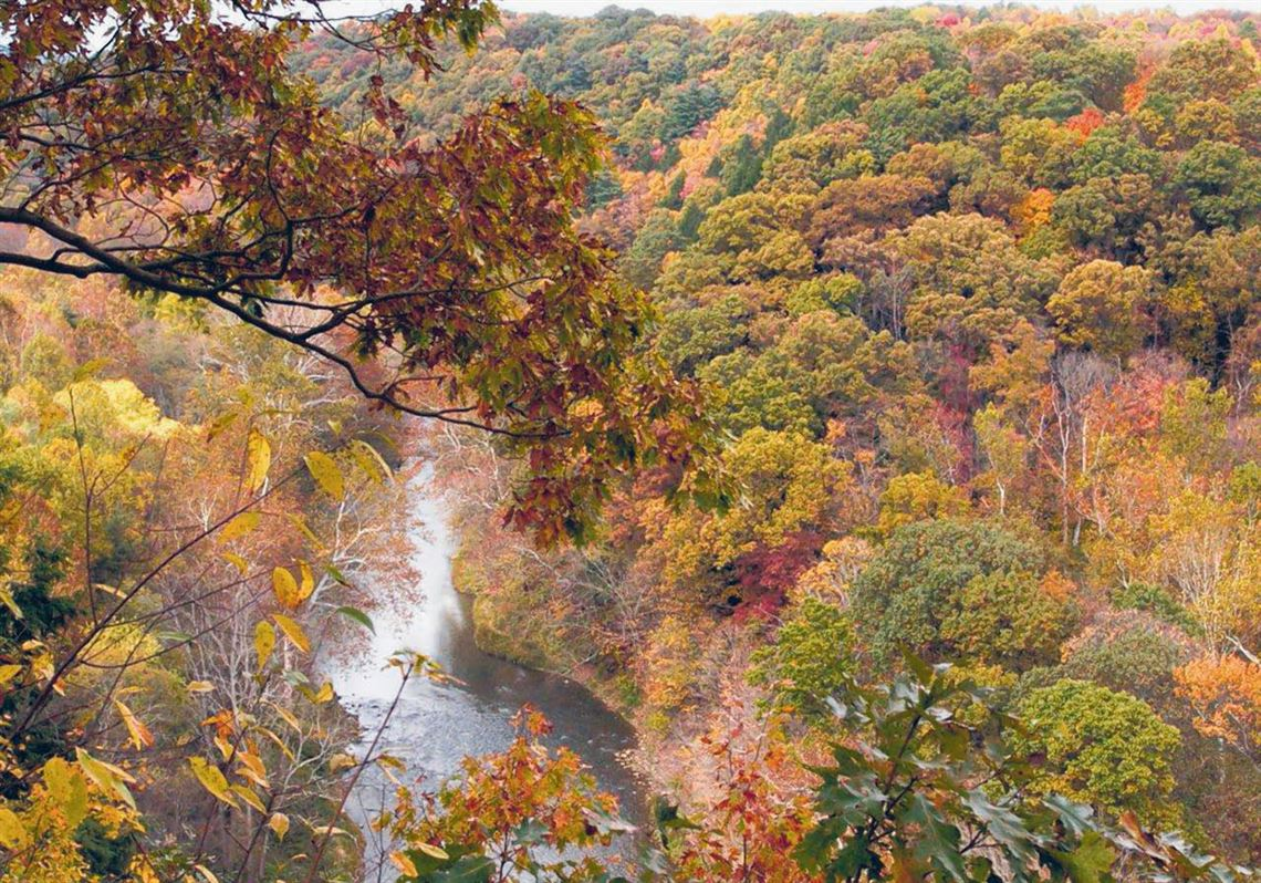 Fall fly fishing on the scenic Little Beaver Creek | Toledo Blade