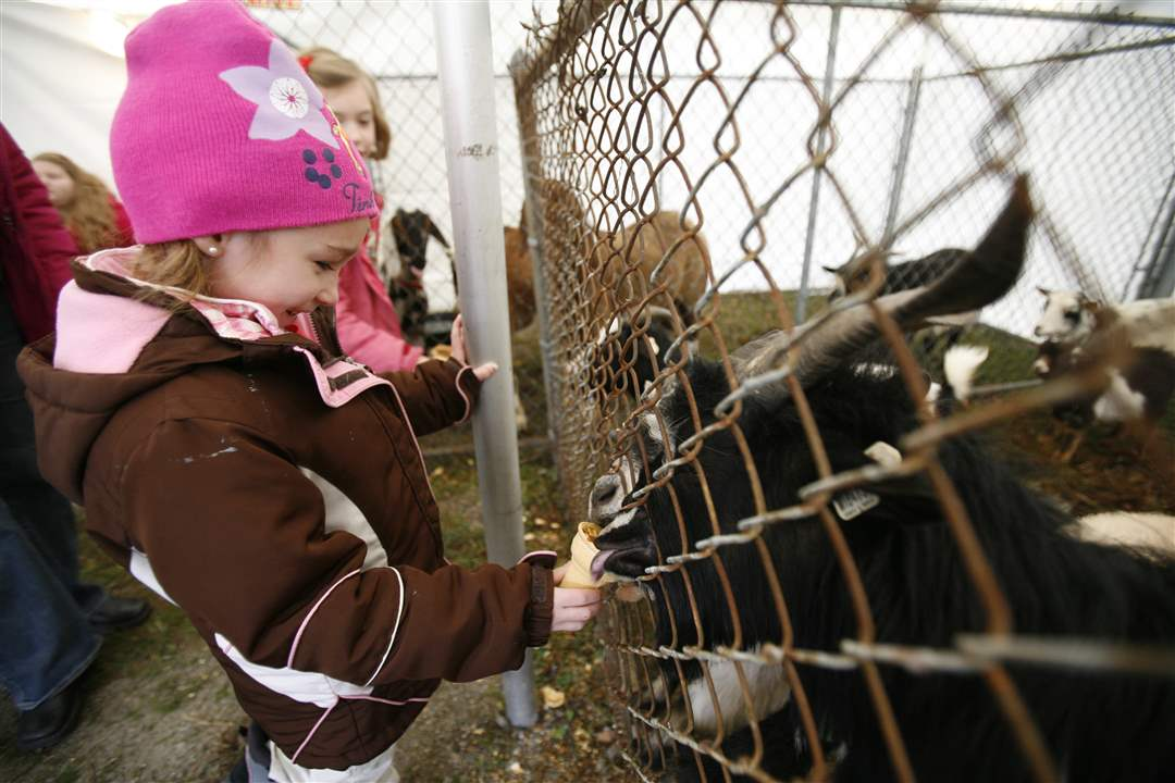 Kelsey-McCarty-of-Tecumseh-Mich-feeds-the-goats