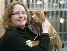 End-of-pit-bull-ban-urged-in-Ohio