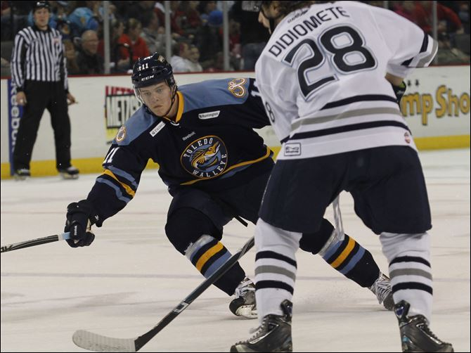 From Europe to Toledo Walleye forward Andrej Nestrasil has split time between Toledo and Grand Rapids in his first pro season.