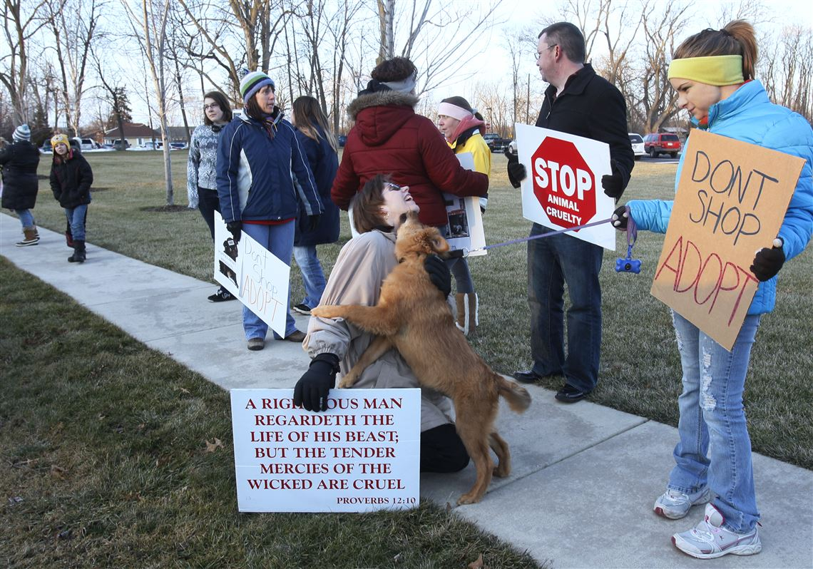 Group protests school's dog auction | Toledo Blade