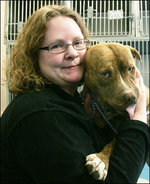 Lucas County Dog Warden Julie Lyle, with a 'pit bull,' said the law will affect the pound in a lot of ways.
