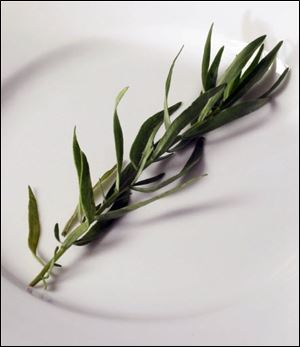A judicious amount of tarragon is springtime on a plate.
