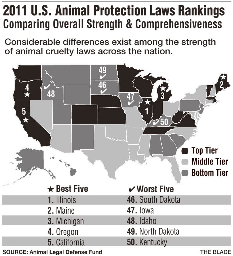 Animal Protection Laws Graphic
