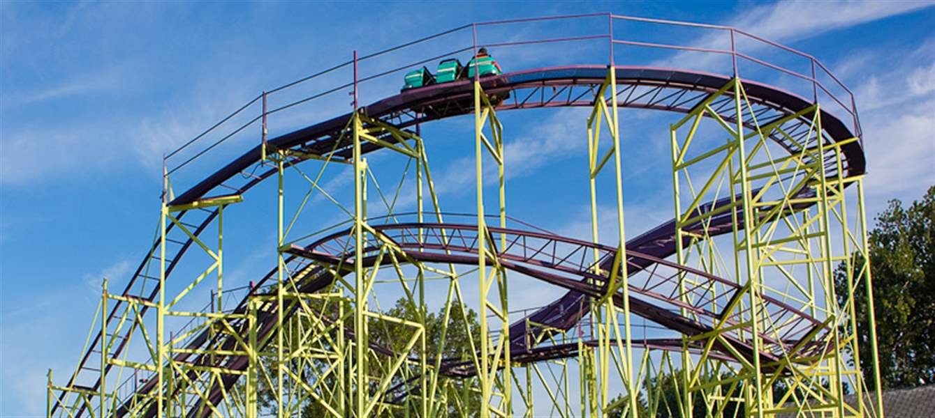 Cedar-point-wildcat