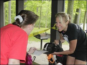 Karen St. Jean, of Toledo, left, registers runner Natalie Williams, also of Toledo, and her dog, J.J. before the race.  The Lucas County Pit Crew holds their first 'Run with the (Pit) Bulls', a 5K race in Secor Metropark in Sylvania, Ohio on May 12, 2012.