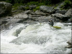 A kayaker paddles through rapids on Section IV of the Chattooga River in Georgia, the famed section where much of the movie 'Deliverance' was filmed. This summer marks the 40th anniversary of the landmark film.