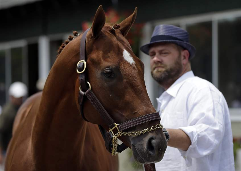 Kentucky-Derby-and-Preakness-winner-I-ll-Have-Another