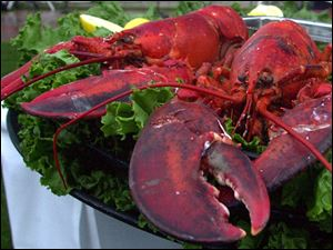 Lobster marks the beginning of summer.