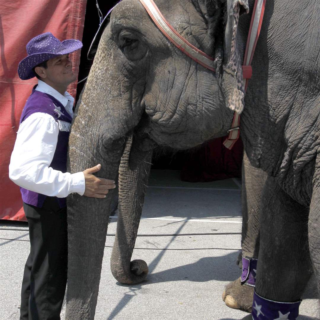 An-elephant-trainer-shares-a-moment
