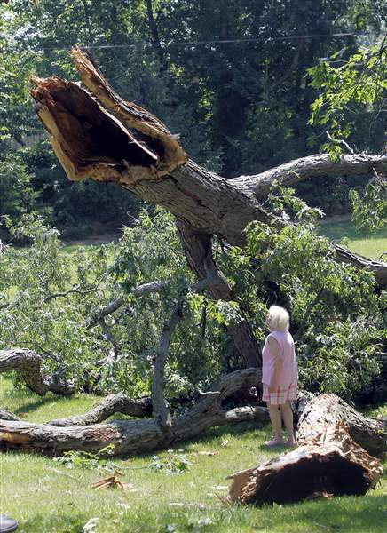 Latest-round-of-storms-downs-trees-cuts-power-2