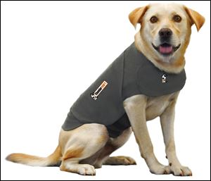 The Thundershirt vest can help ease anxiety that some dogs feel from fireworks, thunderstorms, and car rides.