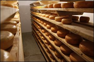 Wheels of gouda cheese are kept cool wile they age in the Cheese cave.