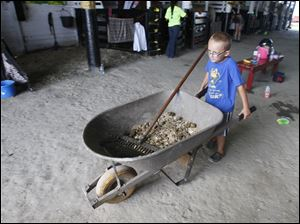 Bowling Green resident Pierson McMillin, 5, helps clean out horse stalls.