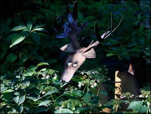 A deer sculpture peaks through the greenery.