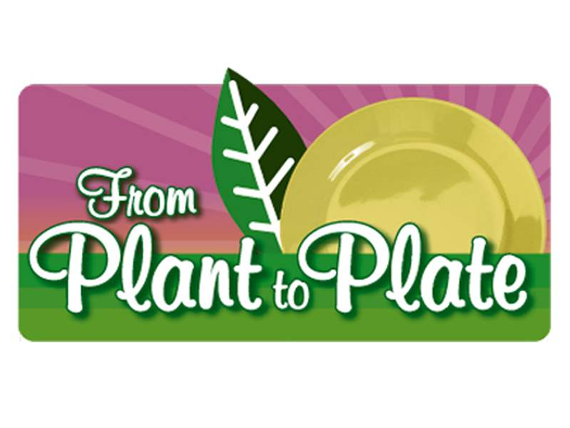 Plant-to-Plate-1