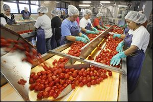 Workers inspect tomatoes at the Hirzel Canning on Lemoyne Road in Northwood.