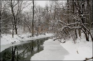 Snowy serenity along Swan Creek.