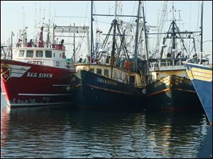 New Bedford, Mass., had the highest-valued catch for the 12th straight year, due largely to its scallop fishery.