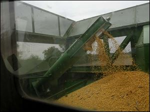 Douglas Pratt, 79, harvests part of his soy crop with his combine.