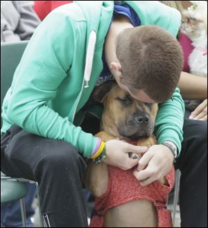 Matthew Bradfield and his dog Neesha, of Perrysburg, during the Beauty PAWgent. The Wood County Humane Society's Mutt Strut at the W.W. Knight Nature Preserve in Perrysburg.