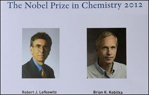 Americans Robert Lefkowitz and Brian Kobilka won the 2012 Nobel Prize in chemistry Wednesday for studies of proteins that let body cells respond to signals from the outside