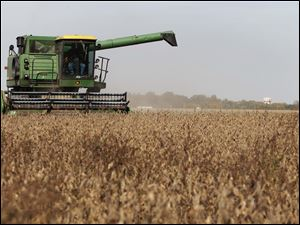 Portage, Ohio farmer Jim Canterbury harvests soy beans that will be taken to the Mid-Wood Inc. grain elevator in Bowling Green, Ohio.