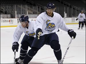 Toledo Walleye hockey players Randy Rowe, left, and Kyle Rogers, do battle during training camp earlier this month downtown.