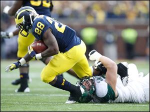 SPT michigan21 University of Michigan player Fitzgerald Toussaint, 28, is tackled by Michigan State University player James Kittredge, 99, during the fourth quarter at Michigan Stadium in Ann Arbor, Saturday, October 20, 2012.  The Blade/Andy Morrison 99