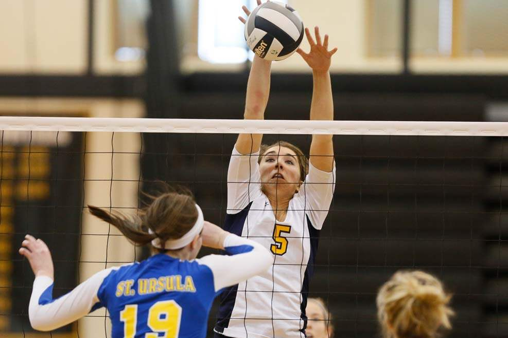 Volleyball-districts-big-hit
